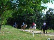 Centre Equestre d'Antoulin